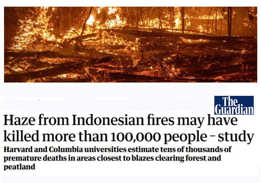 Indonesia Burning - You may want to stock up on Tongkat Ali extract as long as it is available. Indonesia has been burning forests, including Tongkat Ali trees, at an alarming rate. Fires have caused a staggering loss of human life.