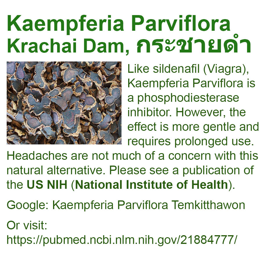Like sildenafil (Viagra), Kaempferia Parviflora is a phosphodiesterase inhibitor. However, the effect is more gentle and requires prolonged use. Headaches are not much of a concern with this natural alternative. Please see a publication of the US NIH (National Institute of Health). Google: Kaempferia Parviflora Temkitthawon - Or visit: https://pubmed.ncbi.nlm.nih.gov/21884777/