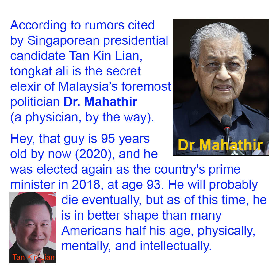 According to rumors cited by Singaporean presidential candidate Tan Kin Lian, tongkat ali is the secret elexir of Malaysias foremost politician Dr. Mahathir (a physician, by the way). Hey, that guy is 95 years old by now (2020), and he was elected again as the country's prime minister in 2018, at age 93. He will probably die eventually, but as of this time, he is in better shape than many Americans half his age, physically, mentally, and intellectually.